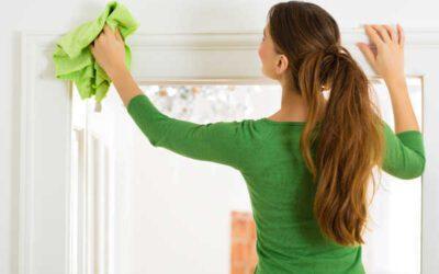 Millised puhastusvahendid valida kodu puhastamiseks?